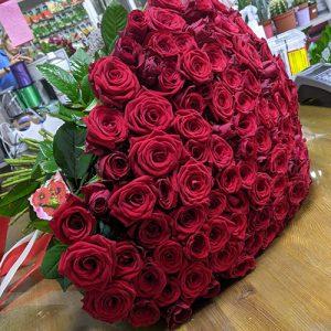 101 красная роза в Житомире фото