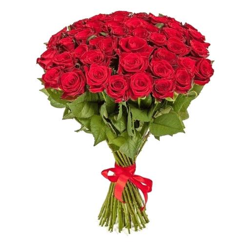Фото товара 51 красная роза в Житомире
