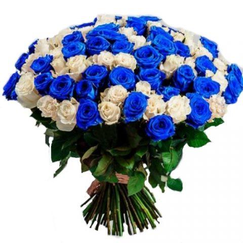 101 белая и синяя роза (крашеная)