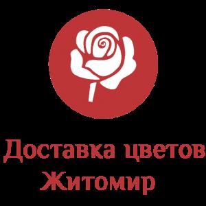 Доставка цветов Житомир лого