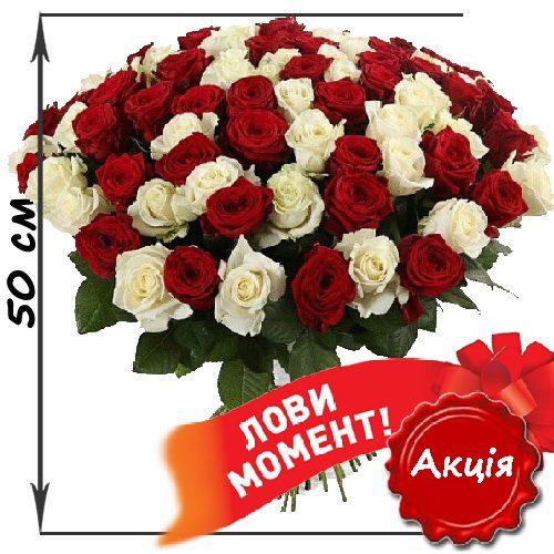 Фото товара 101 роза микс красная и белая (50 см) в Житомире