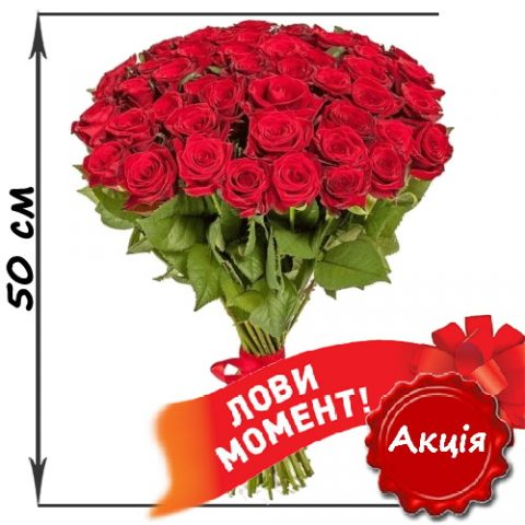 51_red_roses_50sm.jpg