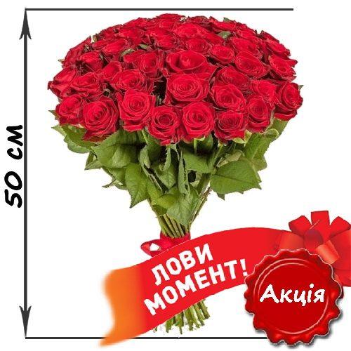 Фото товара 51 красная роза (50см) в Житомире