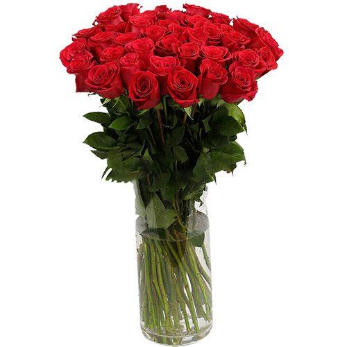 Фото товара Роза импортная красная (поштучно) в Житомире