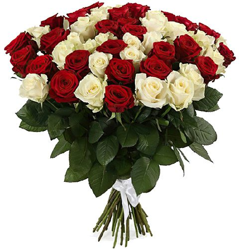 букет 51 роза красная и белая