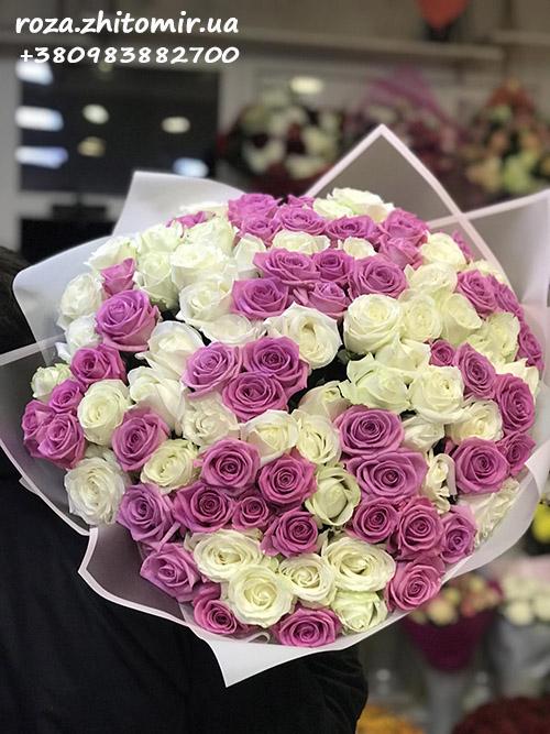101 белая и розовая роза в Житомире фото