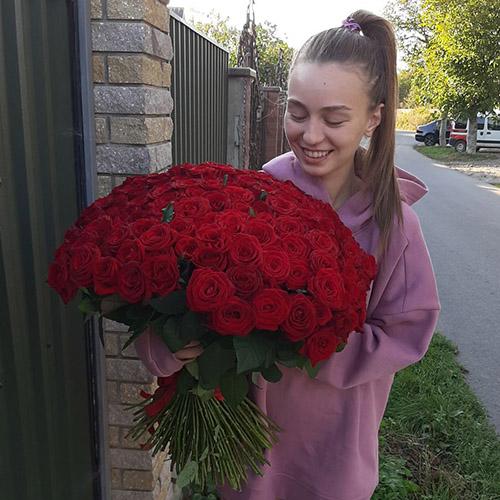 Фото товара 101 красная роза
