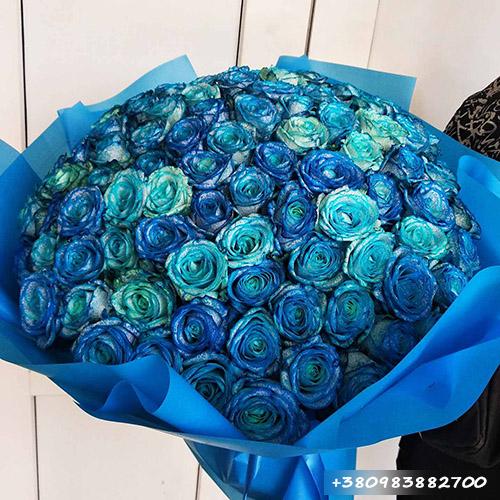 букет синих роз фото
