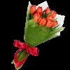 Фото товара 11 красных тюльпанов в Житомире