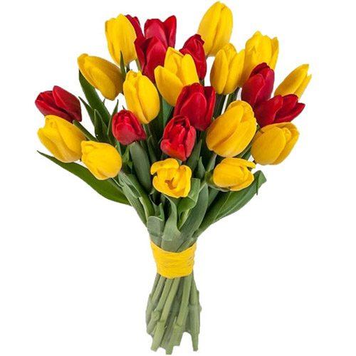 Фото товара 15 красно-жёлтых тюльпанов (с лентой) в Житомире
