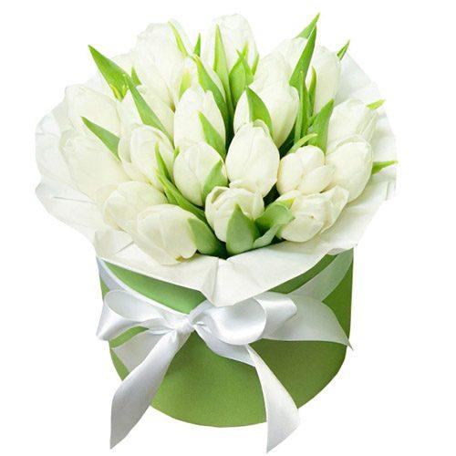 Фото товара 21 белый тюльпан в коробке в Житомире