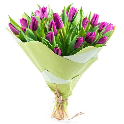Фото товара 25 пурпурных тюльпанов в Житомире