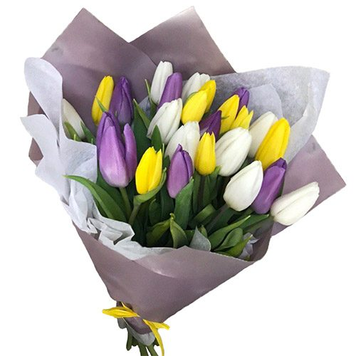 """Фото товара 25 тюльпанов """"Княгиня"""" в Житомире"""