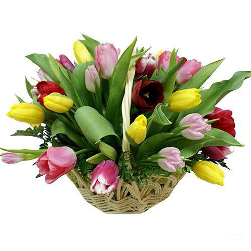 Фото товара 25 тюльпанов микс в корзине в Житомире