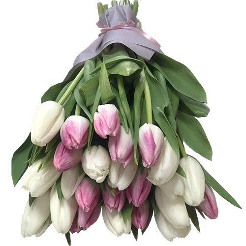 Фото товара 25 бело-розовых тюльпанов в Житомире