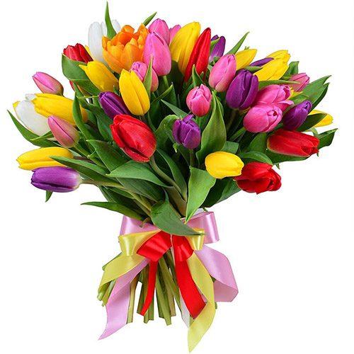 """Фото товара 35 тюльпанов """"Радужный микс"""" с лентой в Житомире"""