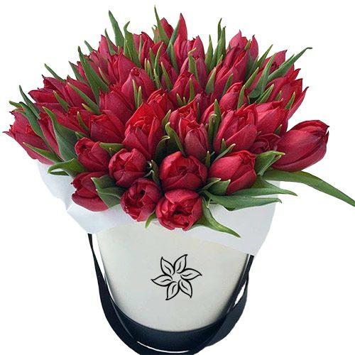 Фото товара 45 алых тюльпанов в коробке в Житомире