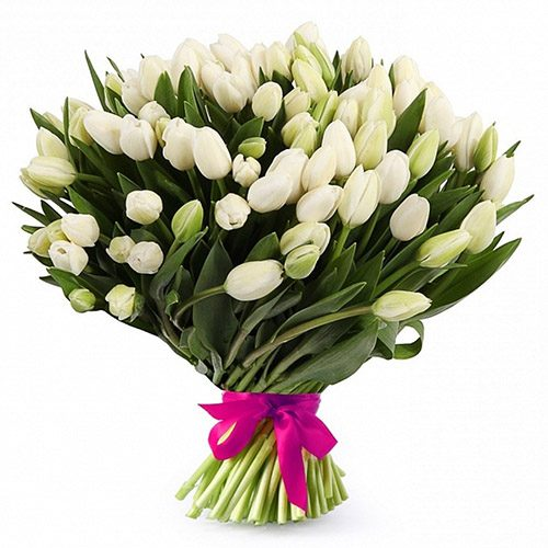 """Фото товара 51 белый тюльпан """"Джульетта"""" в Житомире"""