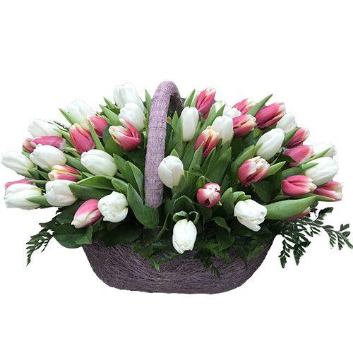 Фото товара 51 бело-розовый тюльпан в корзине в Житомире
