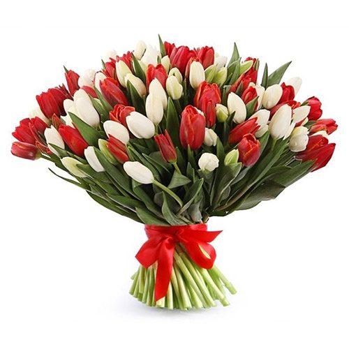 Фото товара 75 красно-белых тюльпанов (с лентой) в Житомире