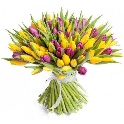 Фото товара 75 фиолетово-жёлтых тюльпанов в Житомире