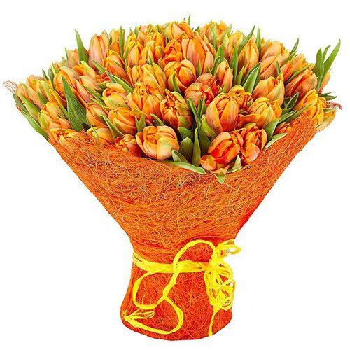Фото товара 101 маковый тюльпан в Житомире