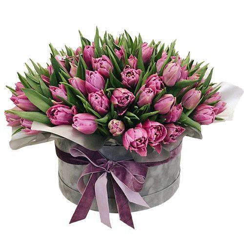 Фото товара 101 пурпурный тюльпан в коробке в Житомире