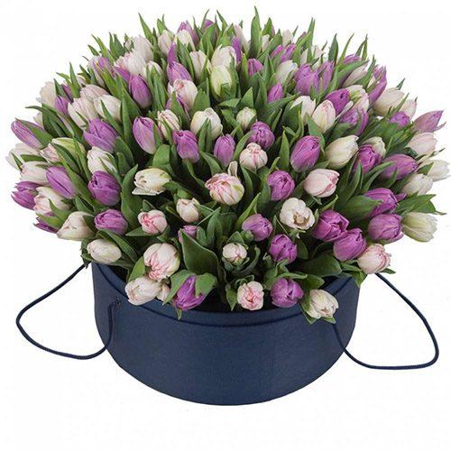 Фото товара 201 тюльпан (два цвета) в коробке в Житомире