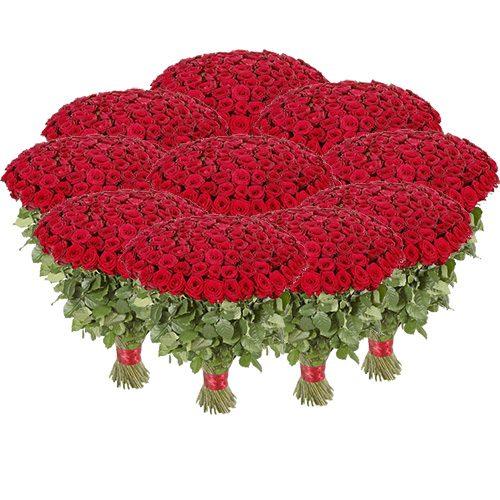 Фото товара Букет 1001 красная роза в Житомире