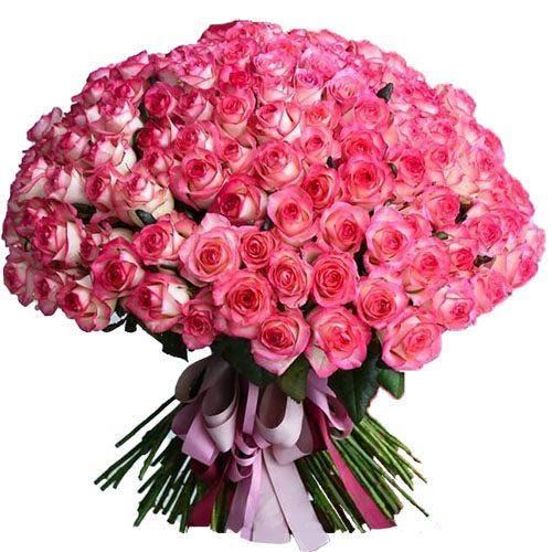 """Фото товара 101 роза """"Джумилия"""" в Житомире"""