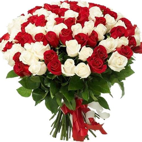 Фото товара 101 красная и белая роза в Житомире