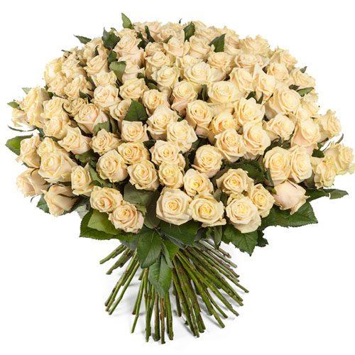 Фото товара 101 кремовая роза в Житомире