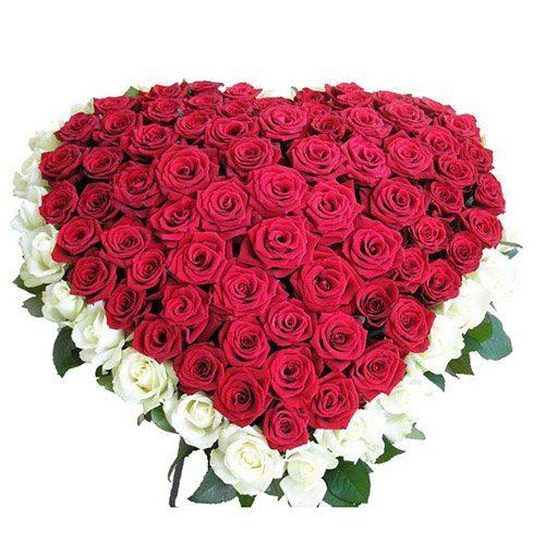 Фото товара 101 роза сердцем - красная, белая в Житомире