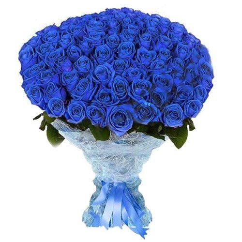 Фото товара 101 синяя роза (крашеная) в Житомире