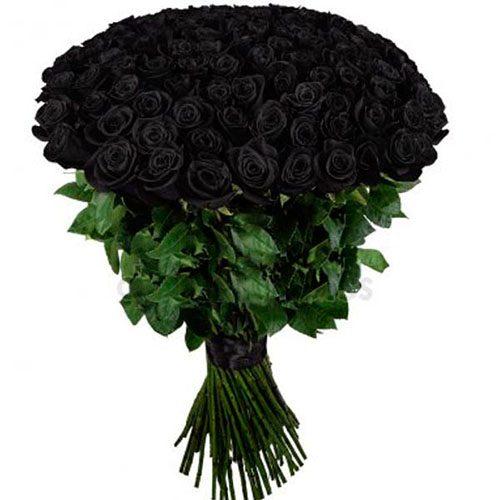Фото товара 101 черная роза в Житомире
