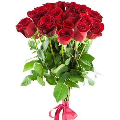 Фото товара 15 импортных роз в Житомире