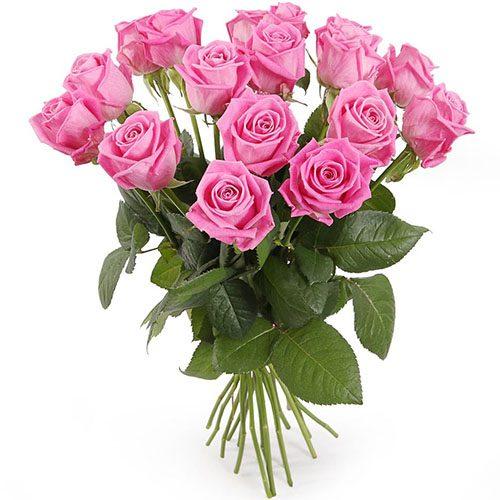 """Фото товара 15 роз """"Аква"""" в Житомире"""