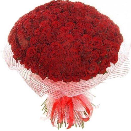 Фото товара 201 красная роза в Житомире