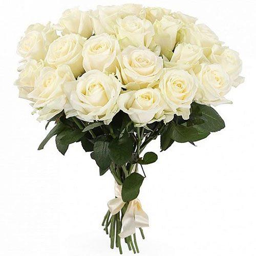 Фото товара 21 белая роза в Житомире