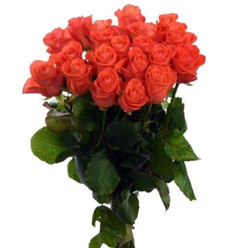"Фото товара 21 роза ""Вау"" в Житомире"