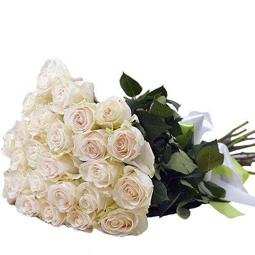 Фото товара 25 белых роз в Житомире