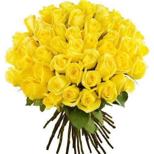 Фото товара 51 желтая роза в Житомире