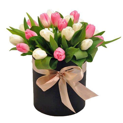 Фото товара 25 тюльпанов в коробке в Житомире