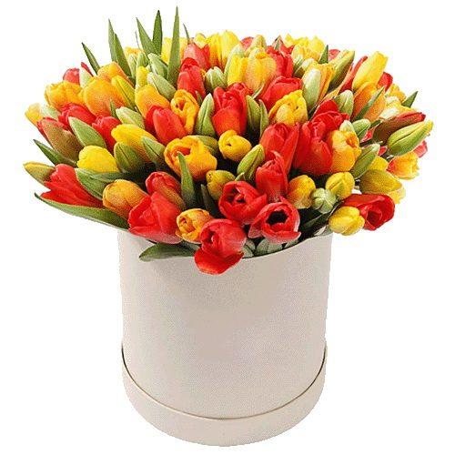 Фото товара 101 тюльпан в коробке в Житомире