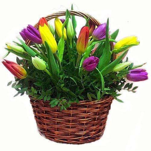 Фото товара 15 тюльпанов в корзине в Житомире