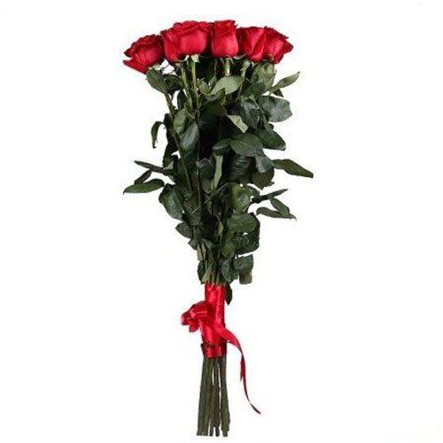 Фото товара 11 метровых роз в Житомире