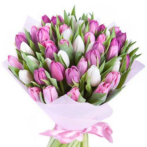 Фото товара 51 бело-розовый тюльпан в Житомире