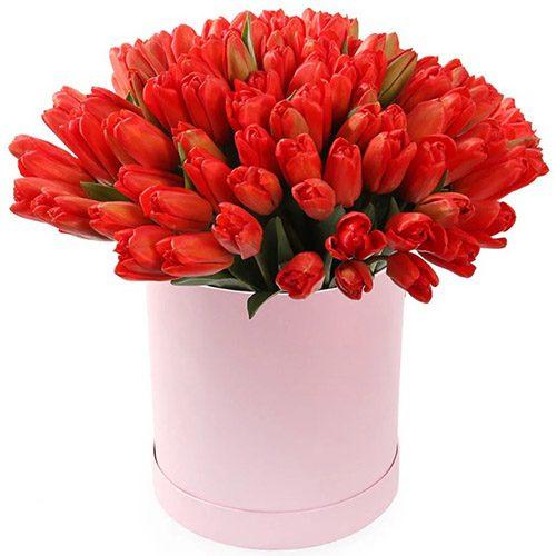 Фото товара 101 красный тюльпан в коробке в Житомире
