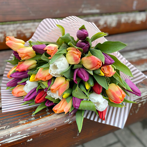 букет разноцветных тюльпанов Житомир