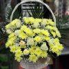 """Фото товара Корзина """"Сердце"""" 100 роз в Житомире"""
